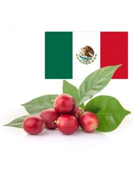 Café pure origine MEXIQUE 100% arabica la brûlerie le Puy en Velay